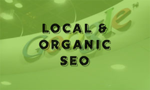 local and organic search engine optimization